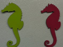 Sea-Horse-Green-and-Red-1024x849