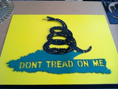 Dont-Tread-On-Me-in-2-Pieces-1024x764